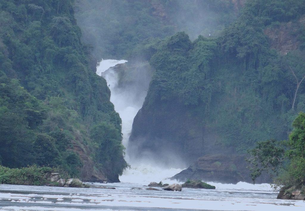 Short Uganda Safaris